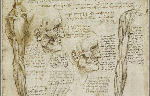 Leonardo da Vinci, anatomistul